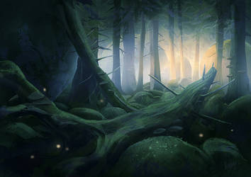 Forest by Minnhagen