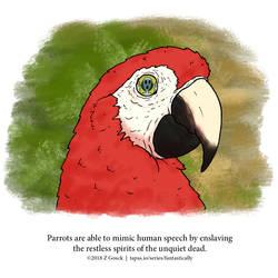 A Fantastically False Fact About Parrots