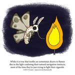 A Fantastically False Fact About Moths by Zombie-Kawakami