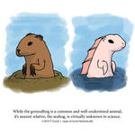 A Fantastically False Fact About Groundhogs by Zombie-Kawakami