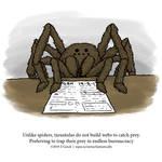 A Fantastically False Fact About Tarantulas by Zombie-Kawakami