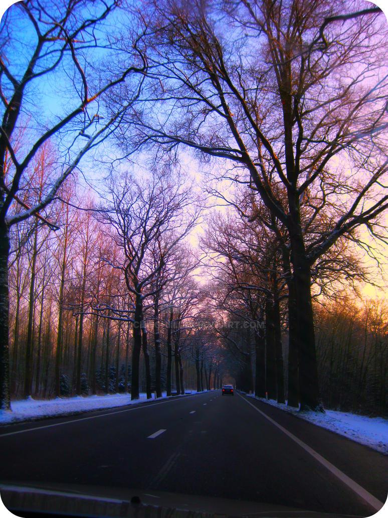 winter tree 1 by Chiiichiii