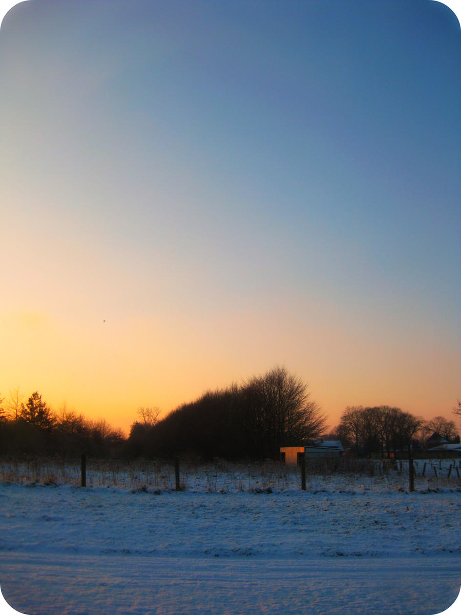 winter tree 3 by Chiiichiii