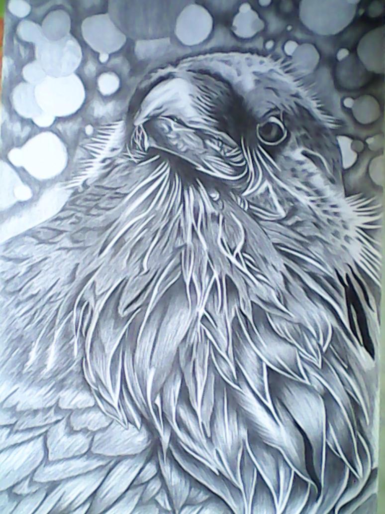 Raven Sketch 2 by michaelbryan