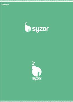 s web logo