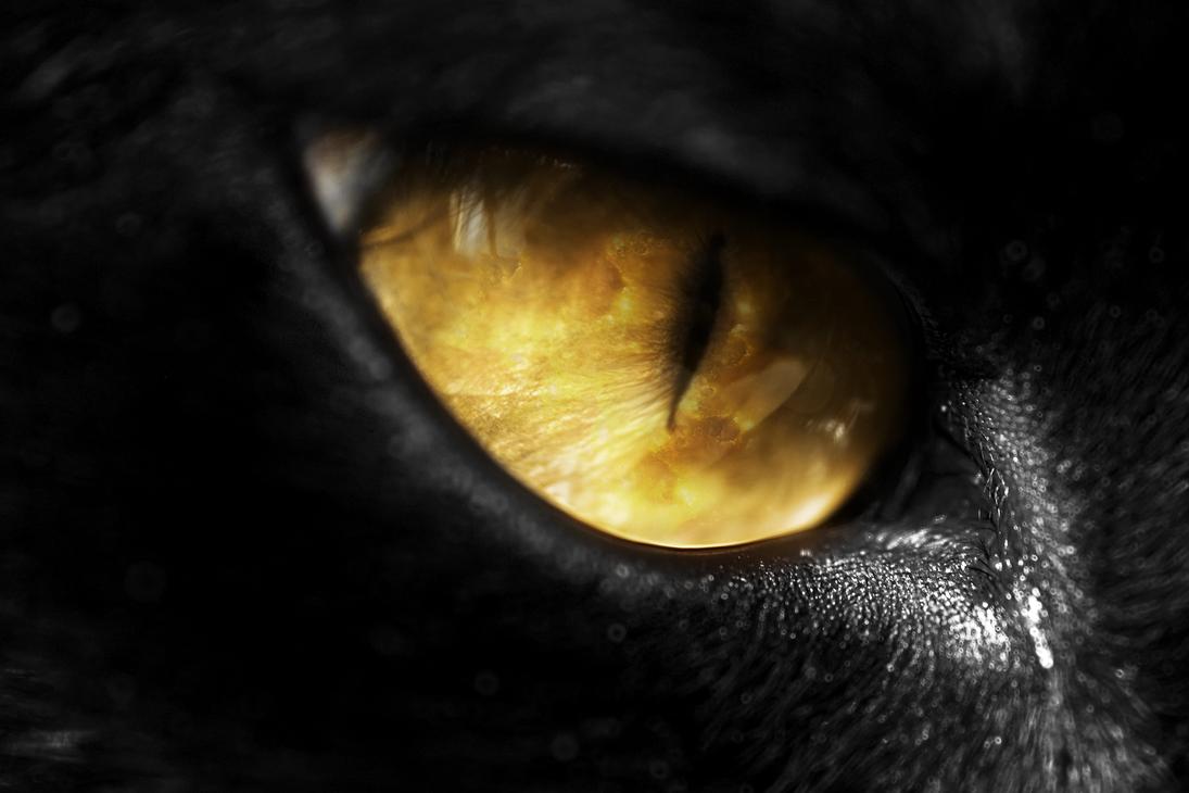 Evil Eye by JeremyYoung on DeviantArt