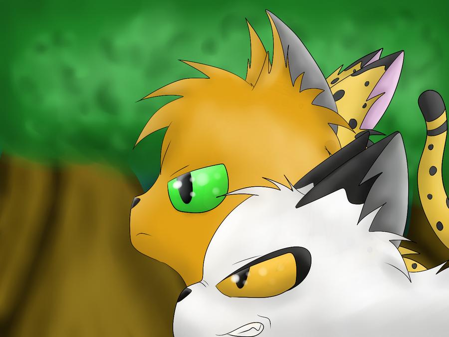 Firestar of Lionclan by Silvernazo