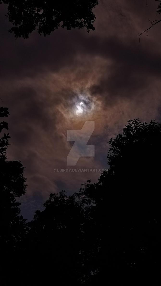 solar eclipse by LBirdy