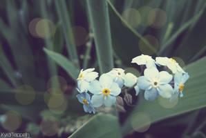 Blue Beauty. by KyraTeppelin