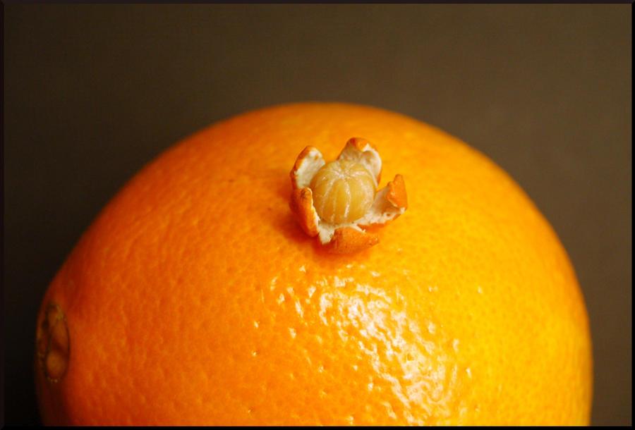 All orange by MiniatureChef