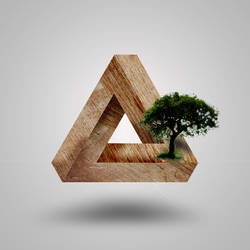 3D wood triangle