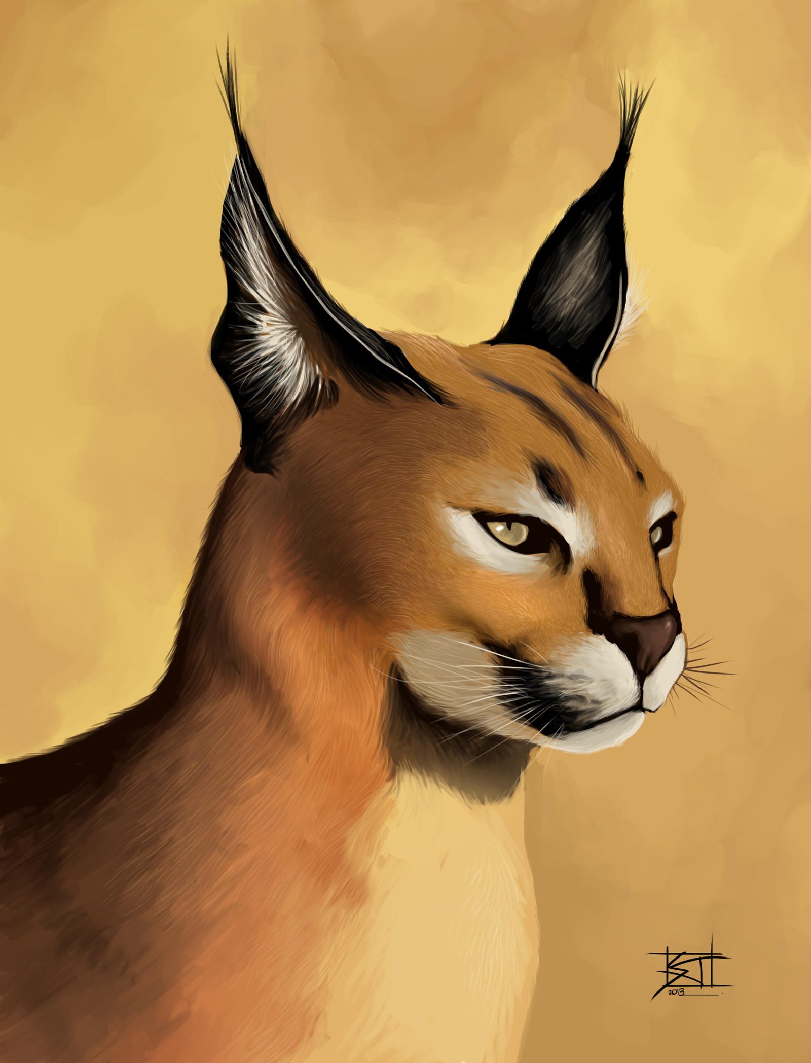 Caracal drawing - photo#8