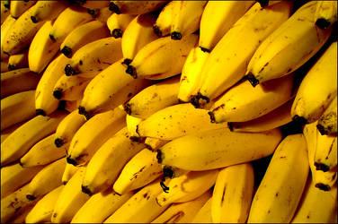Bananas in the sun