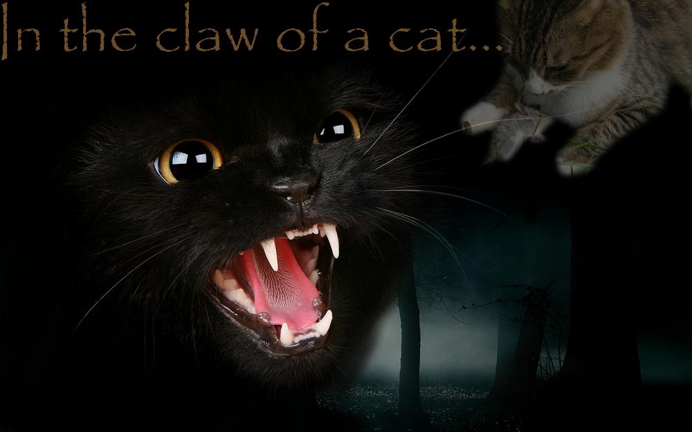 La galerie de l'Évoli sans cervelle... - Page 3 In_the_claw_of_a_cat____by_eevee33-d3ar2lu