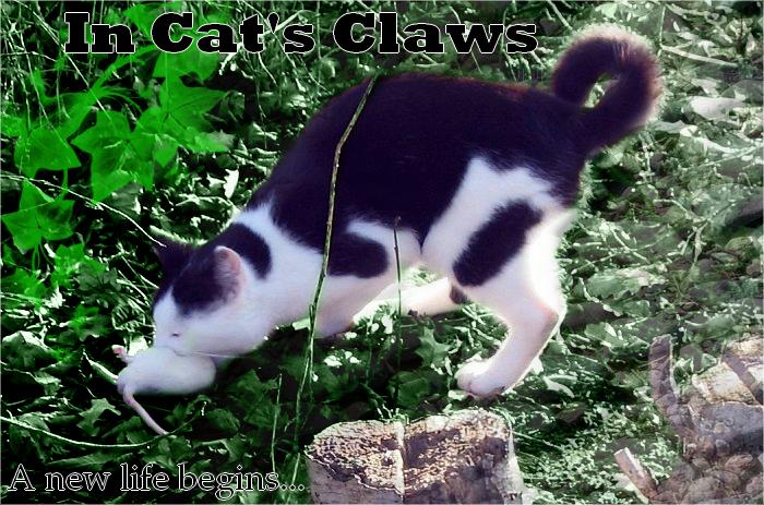 La galerie de l'Évoli sans cervelle... - Page 3 In_cat__s_claws___baniere_by_eevee33-d3em2u0
