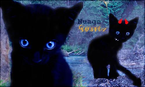 Recensement des Double-Comptes. Nuage_de_quartz___signature_by_eevee33-d5otkrc