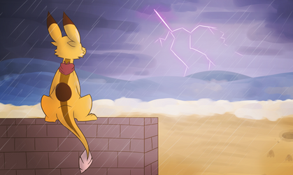Watching The Storm