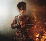 The Valkyrie - Female Viking