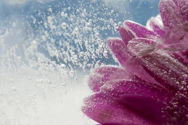 Under Ice by ninereeds-DA