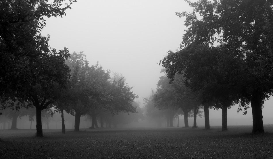 Autumn Fog 02 by KeezRha