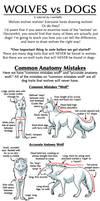 Wolves vs Dogs Tutorial