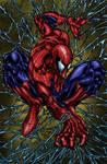 Amazing Spider-man  Colored