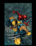 Joe Mad Wolverine Spiderman Colors