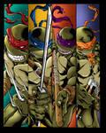 Ninja Turtles  Tmnt Colors