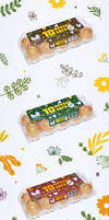 Koko Eggs Package