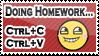 Homework by SuperNeko64