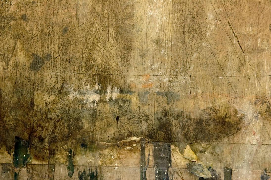 Untitled Texture CXXXXXXIV by aqueous-sun-textures