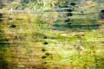 Untitled Texture IX