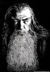 Gandalf The Gray by racca