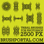 Tribal brushes for Photoshop 2500 px