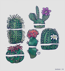 Cactus by svyre