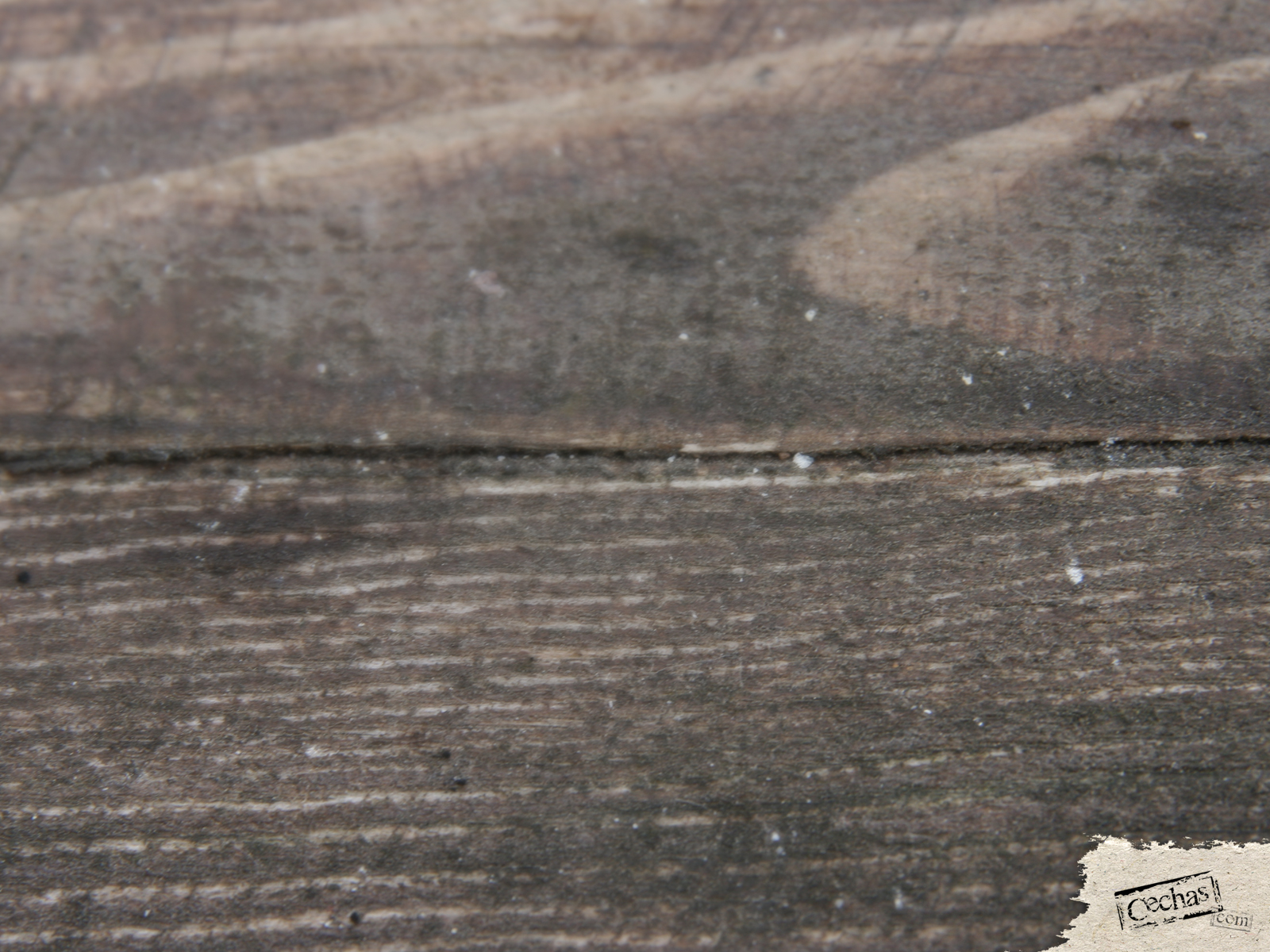 Cechas surfaces-30-1600x1200 by Cechas