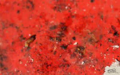 Cechas surfaces-31-1600x1200