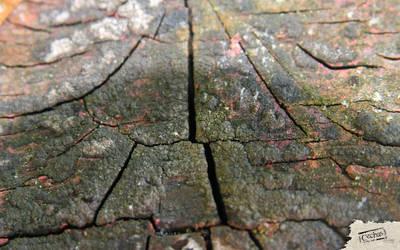Cechas surfaces-33-1920x1200