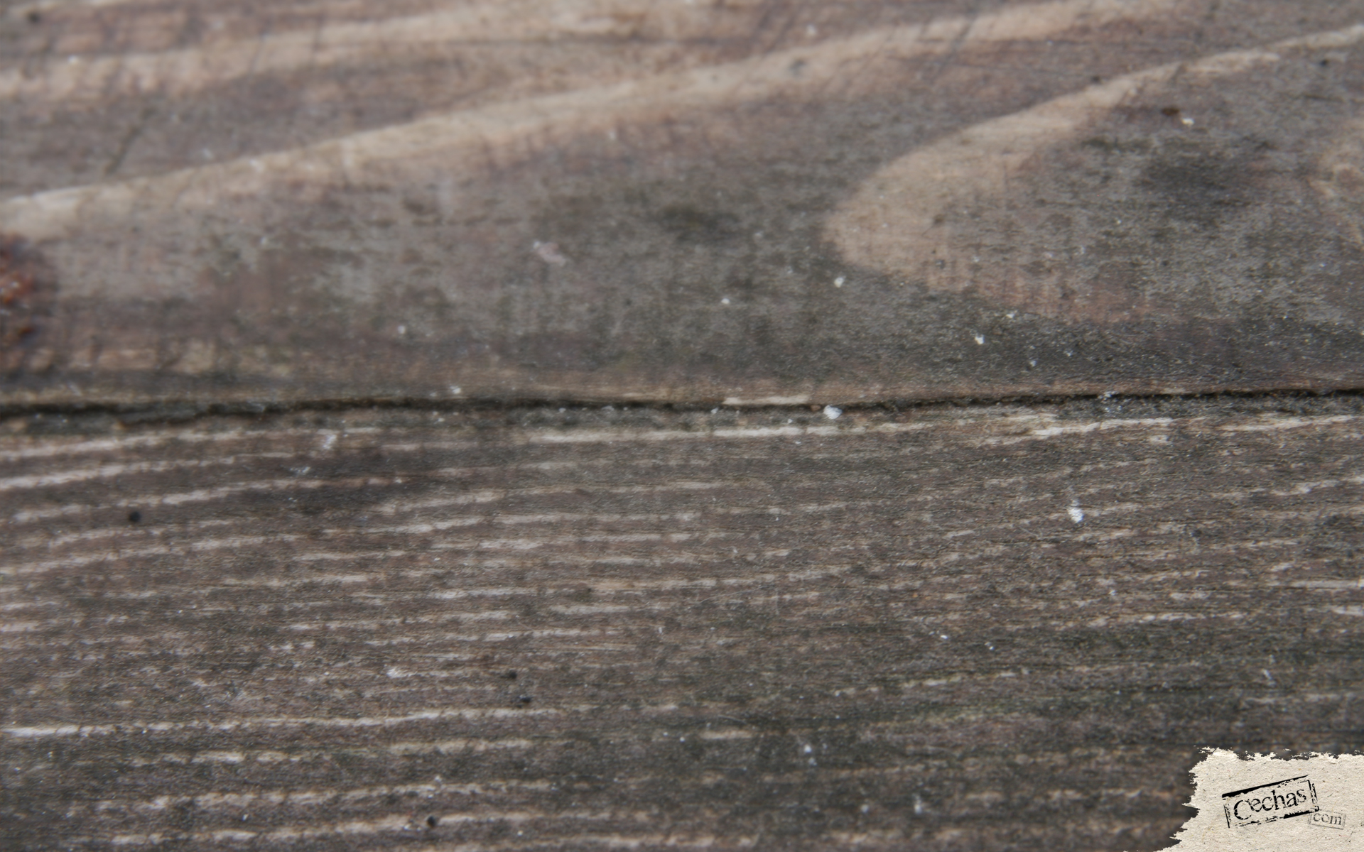 Cechas surfaces-39-1920x1200 by Cechas