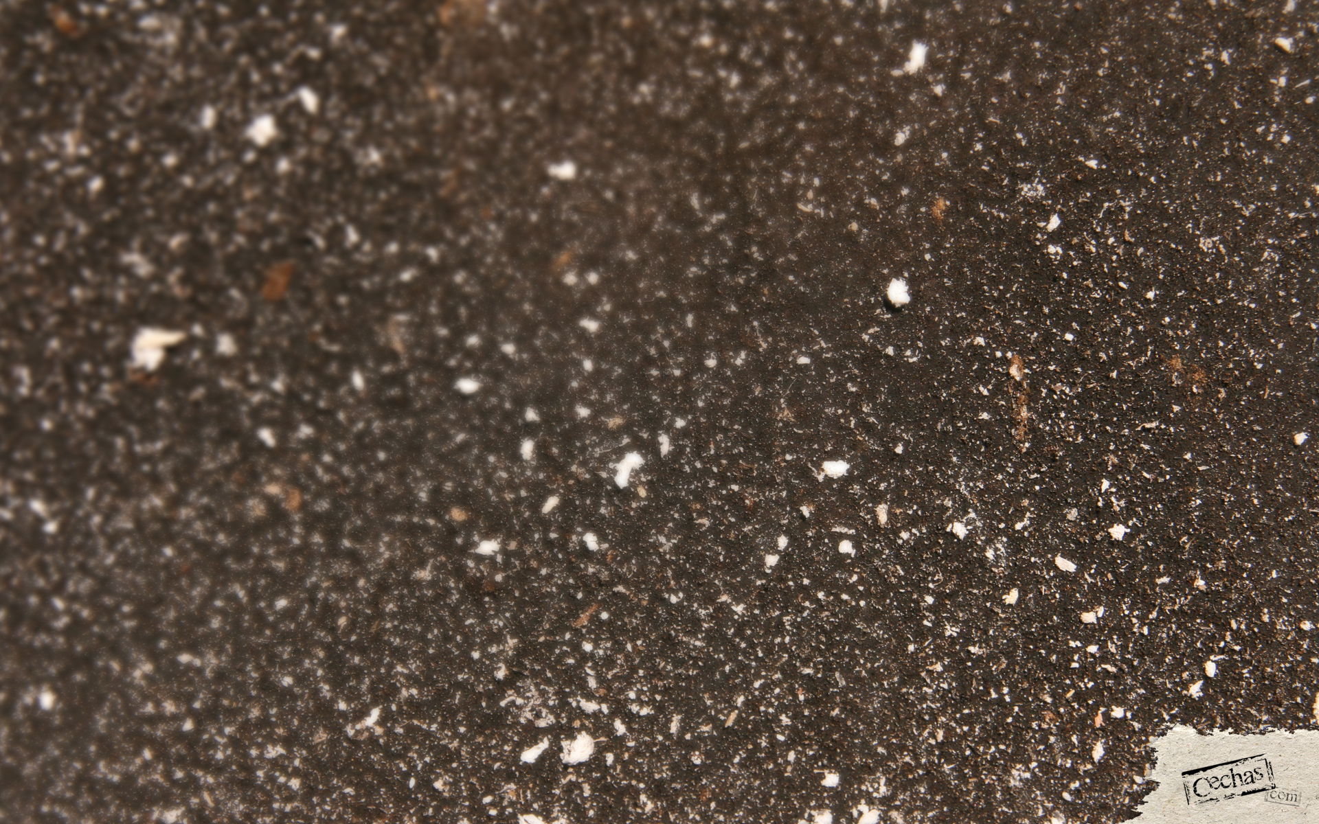 Cechas surfaces-53-1920x1200 by Cechas
