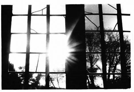Window 6 by sadisticwench