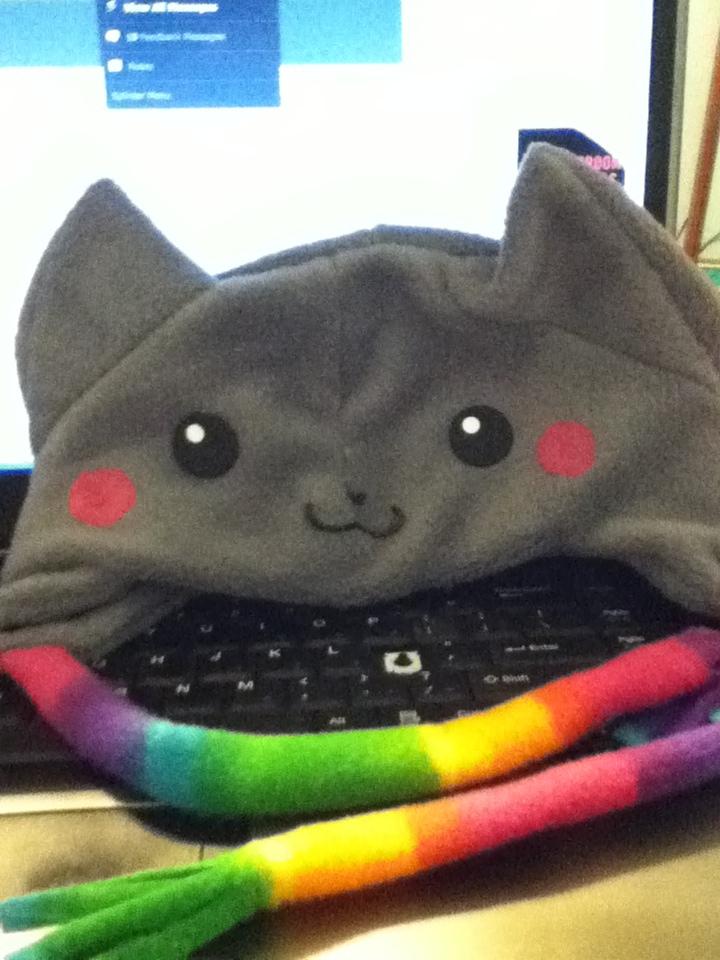 nyan cat hat by SpiritTheKitten