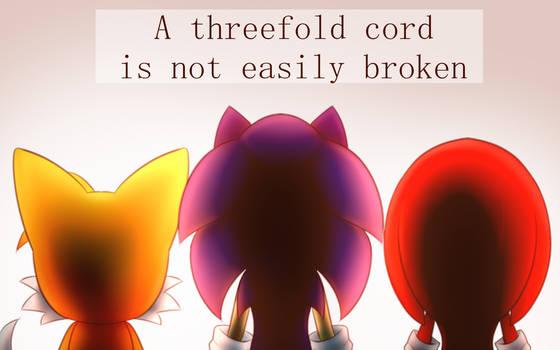 Triple-stranded chord - Team Sonic