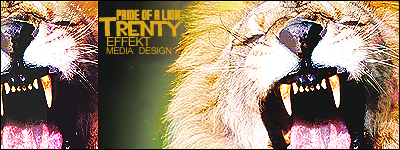 Lions Pride Signature - 3 by Trent911
