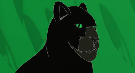 Panther: Pure Elegance and Gracefulness