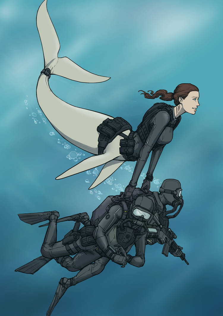 SEAL Delivery Mer