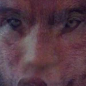ledomo's Profile Picture