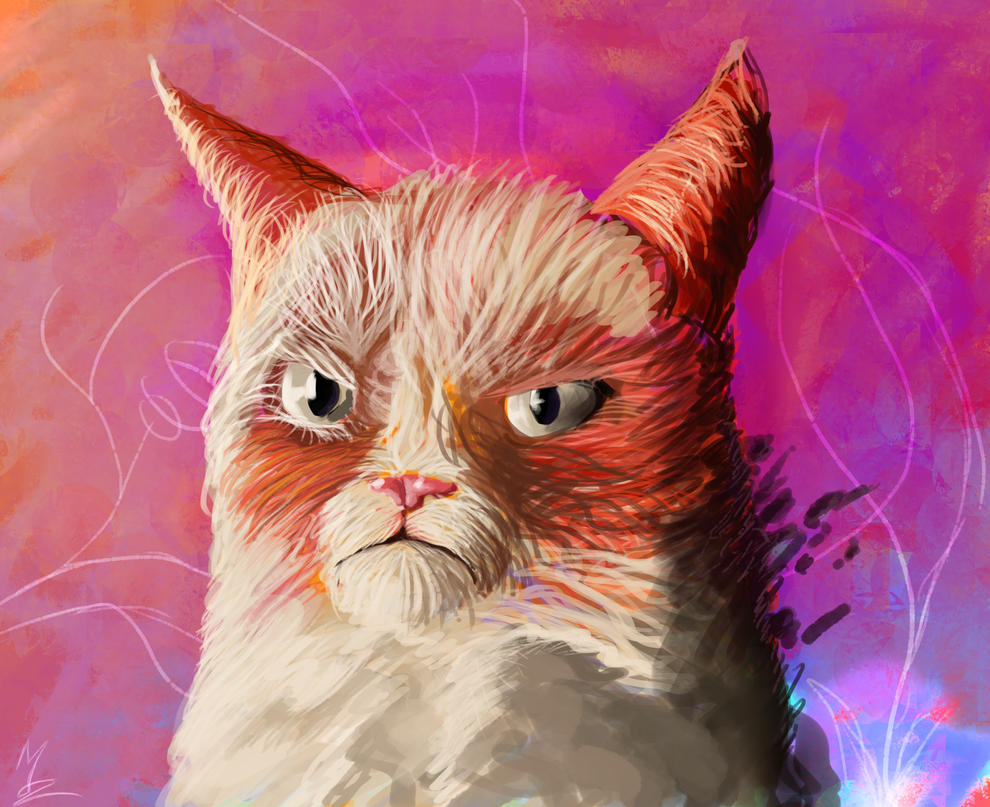 Grumpy cat : Fabulous by Somelarder