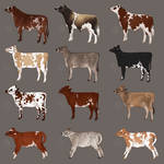Dairy Designs 1 - Free To Claim - All Gone!