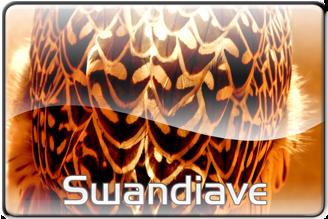 swandiave's Profile Picture